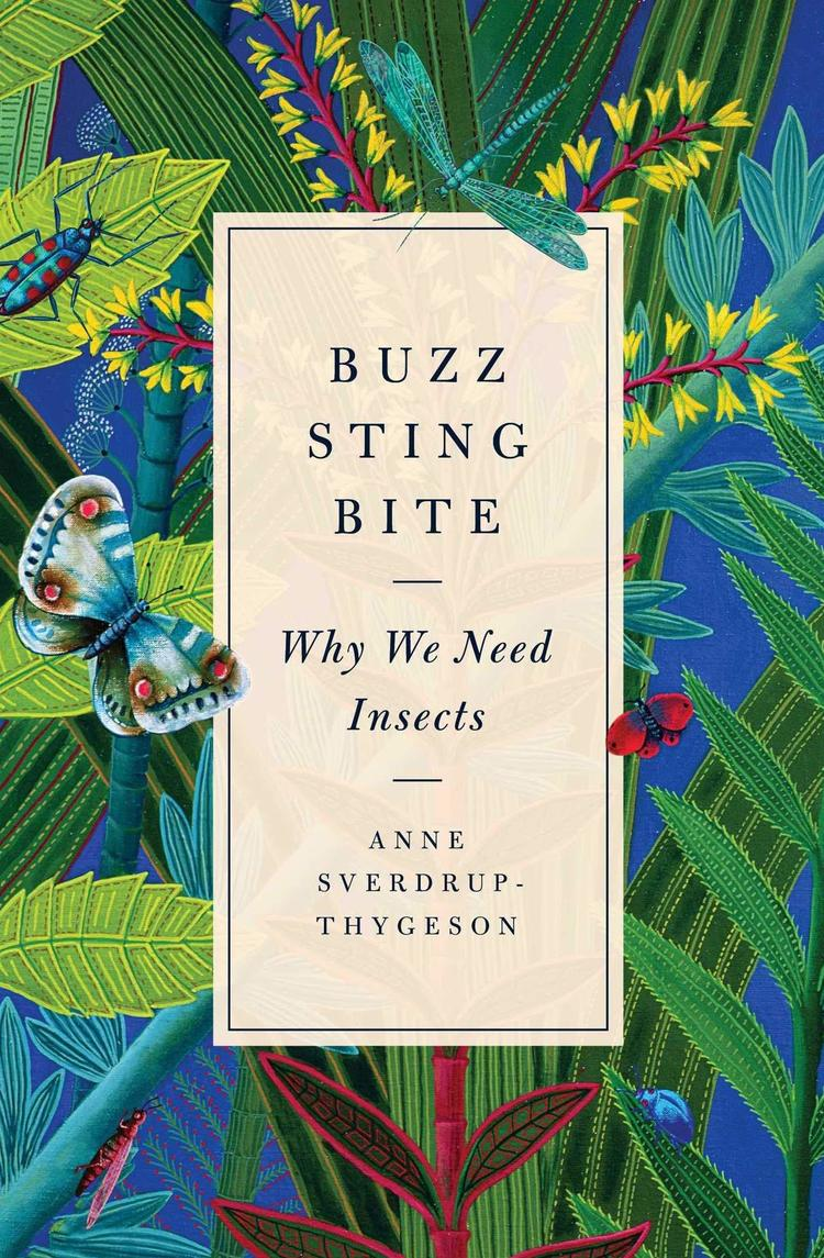 The Bizarre and Necessary World of Insects on Fresh Air