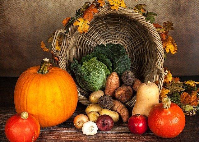 pumpkin 1768857 640 medium
