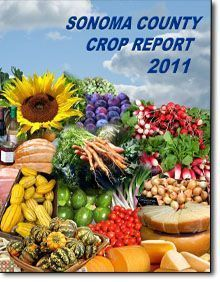 crop rpt cover