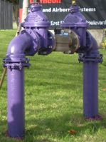 purple-pipe