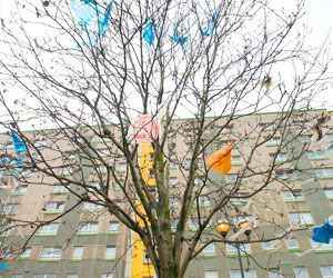 plastic_bags_in_tree