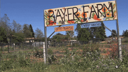 Bayer-Farm.png - 22.87 kB