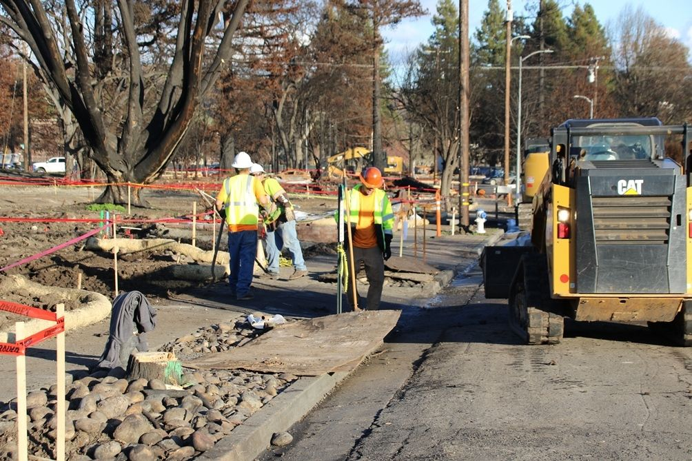 Wildfire recovery in Coffey Park