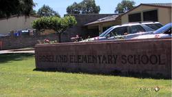 Roseland-David.png - 67.59 kB