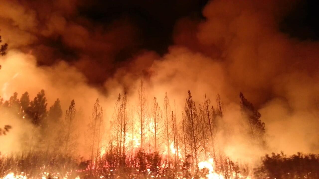 Wildfires.jpg - 74.63 kB