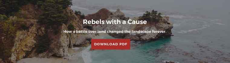 Rebels - Premium 2