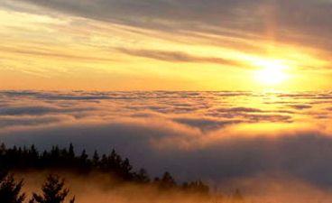 fog3.jpg - 11.93 kB