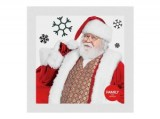 Santa Photo Experience at Santa Rosa Plaza