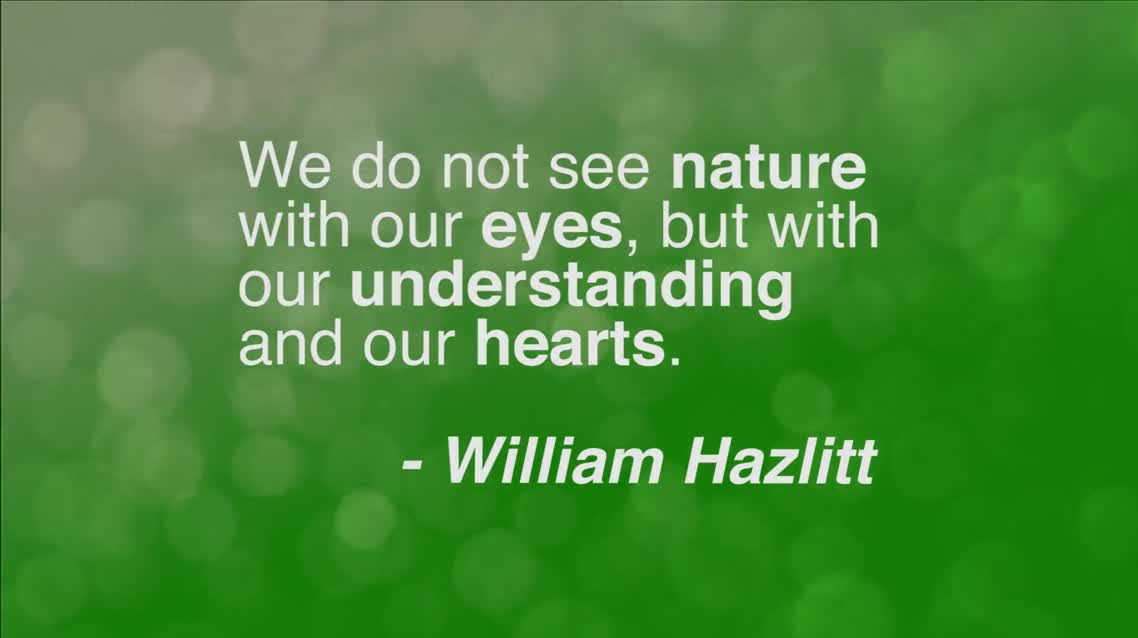 We do not see nature